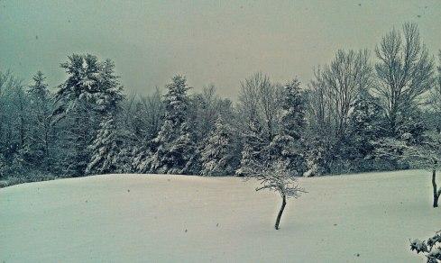 Snowing the Catskills