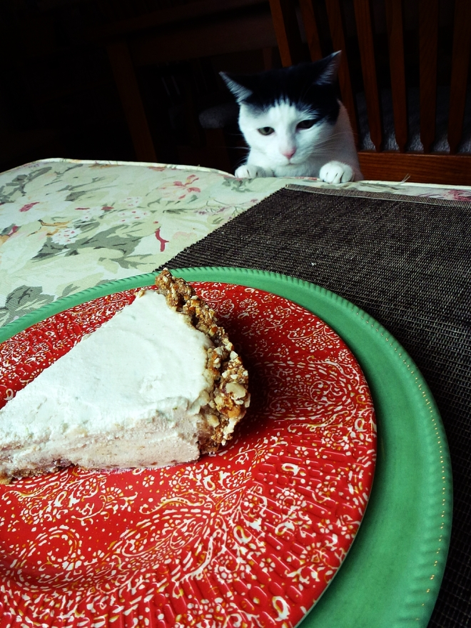 Lexi wants some cheesecake...