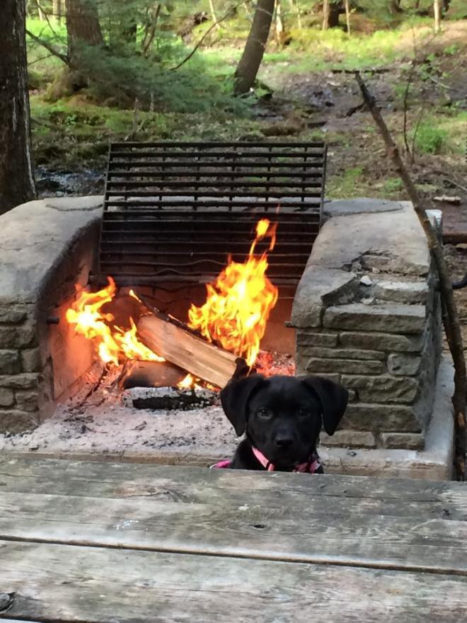 marley camping 1