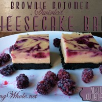 Brownie Bottomed Swirled Cheesecake Bars
